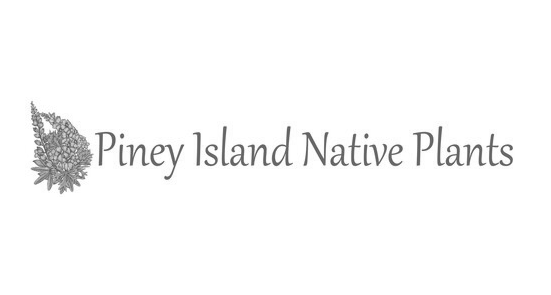 Piney Island Native Plants logo